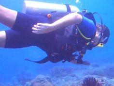 Most recent Nusa Ceningan Indonesia News - http://bali-traveller.com/most-recent-nusa-ceningan-indonesia-news/