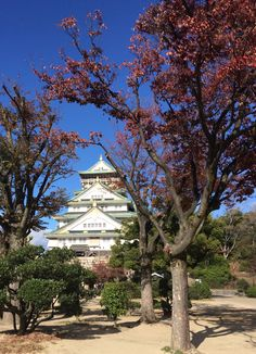 Osaka Castle Osaka Japan, Osaka Castle, Shanghai, Japanese Pizza, German Christmas Markets, Traveling