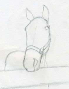 Draw Horses How to draw horse head, a really nice angle. Easy Horse Drawing, Horse Head Drawing, Horse Pencil Drawing, Horse Drawings, 3d Drawings, Animal Drawings, Drawing Sketches, Drawing Tips, Horse Sketch