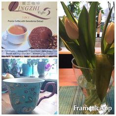 Virágos ébredés #kávé #tulipán #dxn  kavevilag.dxnnet.com