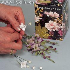 Formación Lydia :: Ver tema - CORNEJOS ORIENTALES Porcelana fría