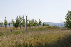Griespark_Volketswil_Switzerland-ASP_Landscape_Architects-09 « Landscape Architecture Works | Landezine