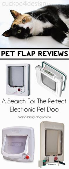Small pet door search and reviews (part 1)