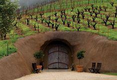 Bella Vineyards in Healdsburg, CA. Beautiful wine caves - known for their Zin. Santa Rosa Wineries, Wine Tasting Near Me, Wine Coolers Drinks, Napa Style, Sonoma Wineries, Sangria Wine, California Wine, Northern California, Wine Fridge