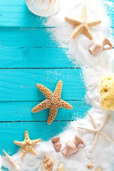 Summer background by mythja. Wooden background with white sand and seashells.Shells, starfish and sand. Ocean Wallpaper, Summer Wallpaper, Aesthetic Iphone Wallpaper, Aesthetic Wallpapers, Flower Backgrounds, Wallpaper Backgrounds, Cute Summer Backgrounds, Image Deco, Holiday Photography