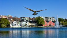 Soaring Over Stavanger Stavanger, Sky, Mansions, House Styles, Water, Norway, Heaven, Gripe Water, Manor Houses