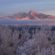Heart Mtn....Cody, Wyoming