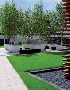 Hyde Park Hayes Piazza in London by Wilson McWilliam Studio