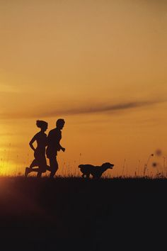 Workout partner boosts calorie burn: 5 traits of a great fitness match How To Jog, Mind Numbing, Living A Healthy Life, Burn Calories, Just Do It, Jogging, Your Pet, Burns, Elephant