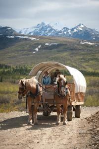 Alaska magazine: Sampling of Denali Tours and Adventures