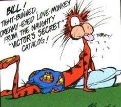 Bill the Cat and Opus as the Ultimate Fanboys Graphic Tee Bloom County