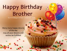 Have a terrific day happy birthday card for brother celebrate your happy birthday wishes for brother m4hsunfo