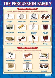The Percussion Family | Music Educational School Posters