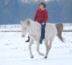 natural horsemanship this the way to treat a horse and ride a horse!!