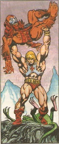 He-man vs Beastman. He man is a better hero than Wonder Woman. Hawkwoman is a better hero than Wonder Woman. I think he could take both of them and would be polite while doing it and nobody would be injured! And he'd win.