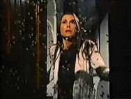 Killer Bees Movie 1974