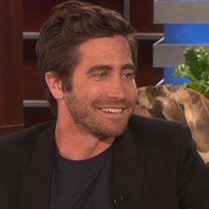 Is Jake Gyllenhaal Dating Rachel McAdams?