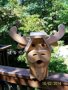 Cedar wood Moose bird house
