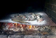 cum se coace pestele pe tabla cu sare pentru saramura barbu vasile Crap, Bbq, Food And Drink, Survival, Fish, Animals, Camping, Outdoor, Barbecue