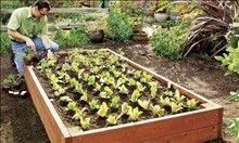 Ultimate Raised Garden Bed