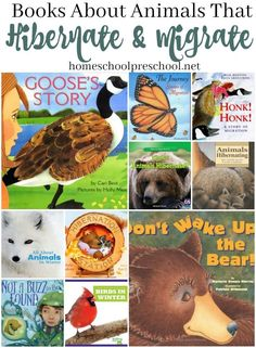 Fill your book basket with these books this winter, and learn how animals survive the long, cold winter months. Discover books about hibernation and migration. @homeschlprek #PicturesBook