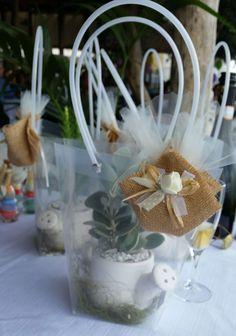 Bomboniera della comunione di Giorgia. Vaso a forma di innaffiatoio in porcellana bianca con pianta grassa. Il tutto racchiuso in un'elegante busta trasparente modello Tiffany.