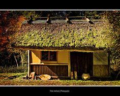 Japanese Tea House, Sasayama, Japan