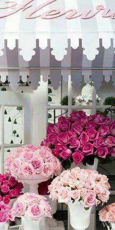 Spring roses. Via @swisschicboutiq. #roses #pretty
