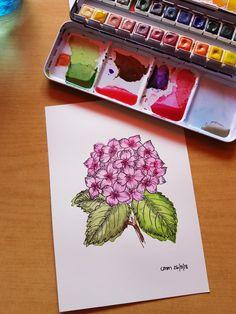 Hydrangea, Watercolor, Tableware, Art, Watercolor Painting, Dinnerware, Dishes, Kunst, Place Settings