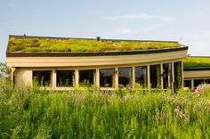 A fantastic gallery featuring 25 Amazing Buildings with Green Roof Designs, also known as living roofs. These spectacular rooftops feature lawns, gardens, and beyond. Green Roof Benefits, Bali, Roofing Options, Eco Roofing, Agricultural Buildings, Living Roofs, Living Walls, Roof Architecture, Amazing Buildings