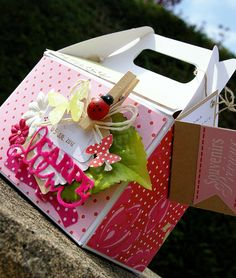 "Boite façon lunch box. Swirlcards ""Eglantine"" http://scrapaurore.canalblog.com"