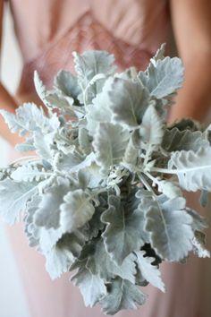 dusty miller wedding bridesmaid bouquet diy