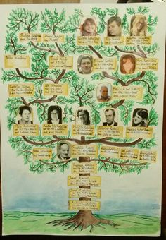 Family tree of my wife's family, which I made as a present for her 99 year old great grand aunt (in the middle).