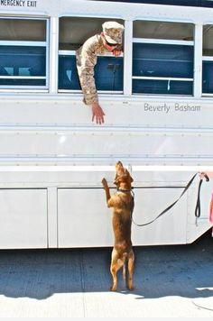 Precious! - #dog + #soldier