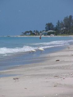 Longboat Key, FL  To take my daddy back there. We  havent been since my mom was  diagnosed with Alzheimers