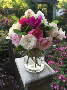 My Fresh Cut Roses Keep Wilting: How To Keep Cut Roses Fresh -  Roses look great in the garden but are good in bouquets too. If your fresh cut roses keep wilting, then this article can help. Click here to find tips for keeping roses fresh after being cut so you can enjoy these lovely flowers even longer.