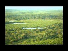 Beautiful Guinea-Bissau Landscape - hotels accommodation yacht charter guide All Beautiful Guinea-Bissau and Travel Vids @hotels-aroundtheglobe.info or http://www.hotels-aroundtheglobe.info or Wallpapers http://www.wallpapers2000.com