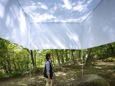 Forest Shadow by Tomohiro Hata and Takashi Manda