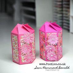 Diy Paper, Paper Crafts, Hexagon Box, Craft Box, 3d Craft, Treat Holder, Easy Diy Crafts, One Design, Card Templates