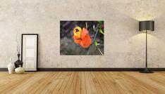 Orange Color, Color Pop, Colour, Wall Art Decor, Wall Art Prints, Flower Close Up, Printable Wall Art, Photo Art, Lily
