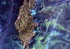 NASA Landsat image