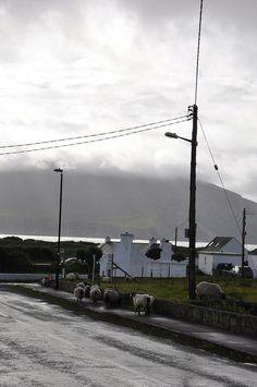 Achill Island, Co. Mayo, Ireland by Fergal of Claddagh, via Flickr.