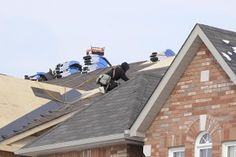 50 Year Asphalt Roof Shingles