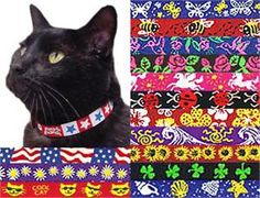 City Kitty Black Band *Free Shipping* Comfy Stretch Beastie Bands Cat Collars