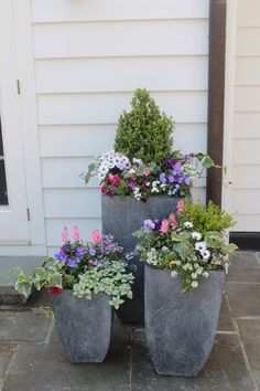 Spring container gardens by Nielsen's
