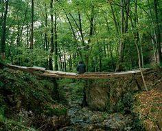 Jaap Scheeren, 3 Roses, 9 Ravens, 12 Months (Slovakia) | The Bridge, 2008