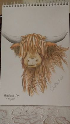 Highland cow sketch coloured pencil Cow Pictures, Pictures To Draw, Animal Sketches, Animal Drawings, Drawing Projects, Art Projects, Cow Sketch, Cow Drawing, Canvases