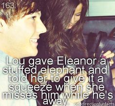 Louis u sound like an awesome boyfriend! Eleanor u r lucky 2 have such a great boyfriend! And so is any other girl who dates any one of the guys! One Direction Girlfriends, One Direction Quotes, The Girlfriends, I Love One Direction, Louis And Eleanor, Larry Shippers, Beautiful Girlfriend, Eleanor Calder, Louis Williams