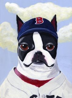 Boston Red Sox Terrier :D