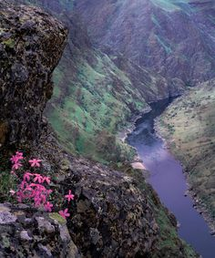 ✯ Hells Canyon and Snake River - Idaho / Oregon border